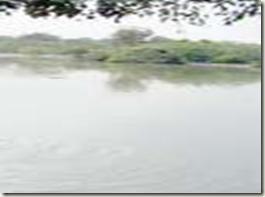 sanctuary birds park banglore