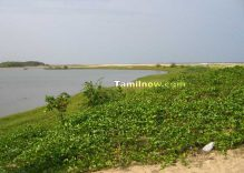 Chunnambar beach in Ariyankuppam, Pondicherry, Tamilnadu