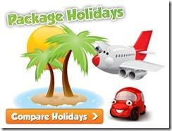 travel_holidays