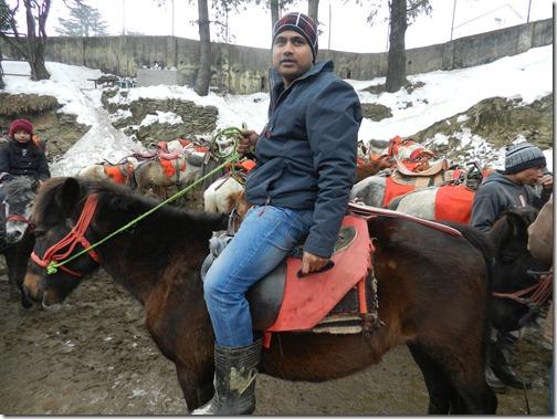 Horse-Ride-in-Kufri-Simla