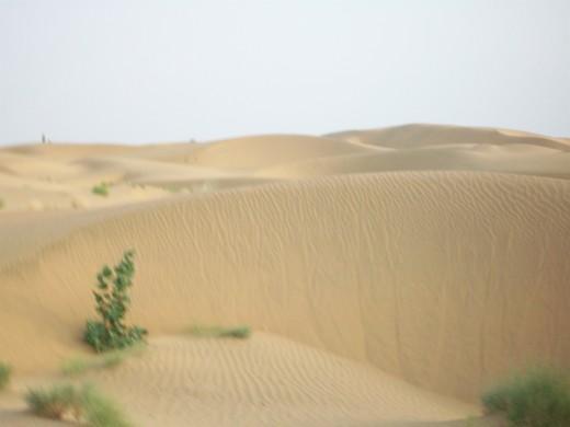 SanDunes Jaisalmer Tourist Spots